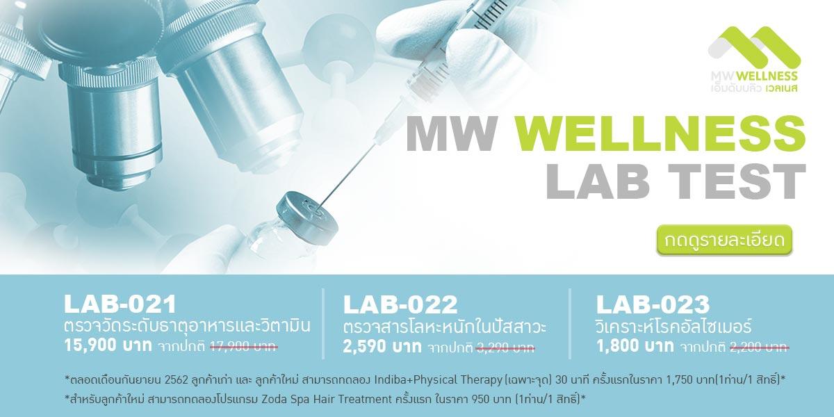 mw wellness lab test