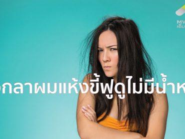 ผมแห้ง, ผมแห้ง เสีย, ผมแห้งเสีย, ผมชี้ฟู, ผม, ผมสั้น, ผมยาว, บำรุง, บำรุงผม, บำรุงผมเสีย, หนังศีรษะ, หัว, สุขภาพ, ดูแลสุขภาพ,